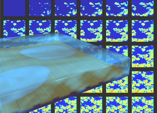 Photonic Crystal-Enhanced Microscopy