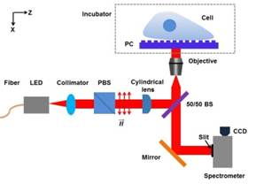 Figure 1. Optical schematic of PC-enhanced microscope
