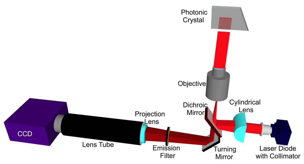 Figure 5. Schematic of the laser scanning instrument. The focal point of the cylindrical lens is located at the back focal plane of the objective, resulting in a line of illumination in the PC that is collimated along the angle perpendicular to the PC grating lines but focused in the orthogonal direction. Linear translation of the cylindrical lens results in adjustment of the incident angle to achieve 'on-resonance' illumination. Here, the PC is shown face down, although for this project illumination will be provided from the top of the chip.
