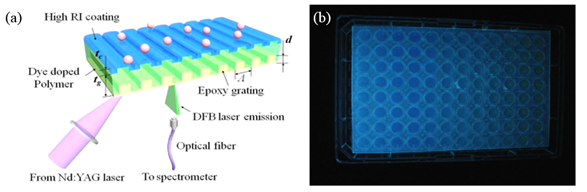 Figure 1. (a) Schematic diagram of the sensor structure and experimental setup, (b) DFB laser biosensor incorporated with bottomless 96-well microplate (under UV lamp).